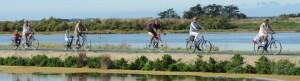 vélo ars en ré - maisons de l'ocean - blog