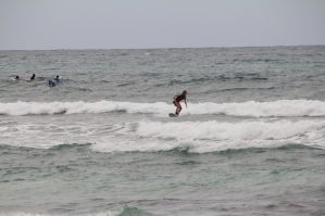 surf en guadeloupe