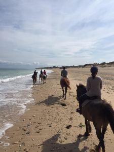 équitation sur la lage à l'île de ré